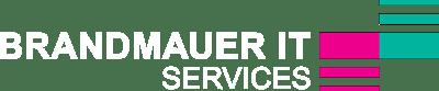 BRANDMAUER_IT_SERVICES_Logo_400px_negativ.png