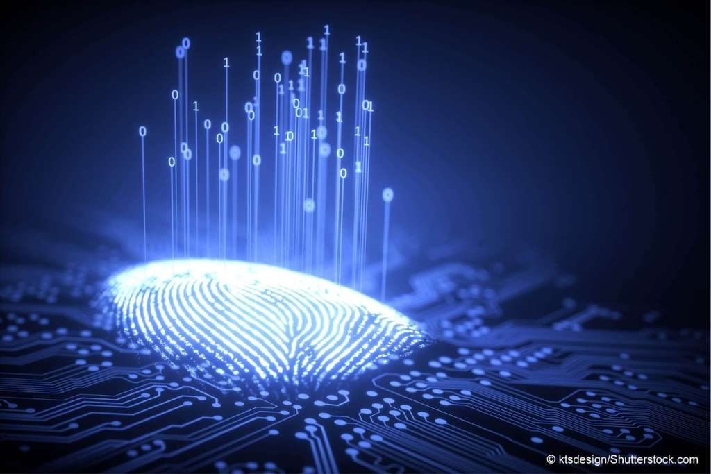 So verwalten Sie digitales Erbe privat und geschäftlich