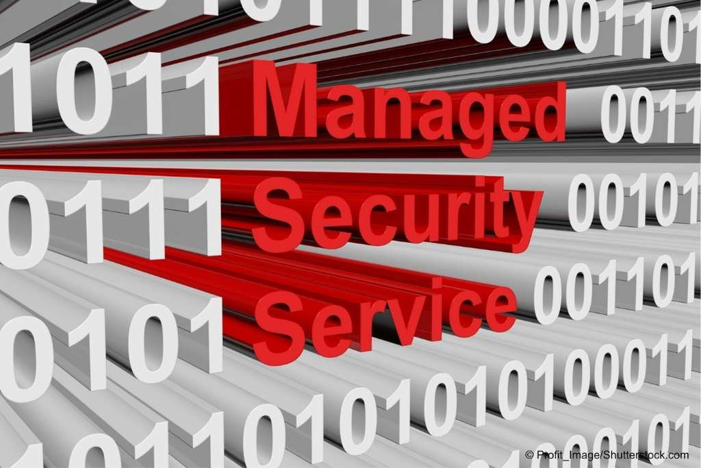 Was sind Managed Security Services?